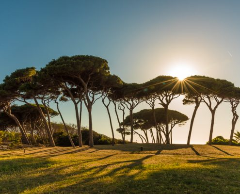 Italy, Tuscany, Baratti, typical sunset in Maremma