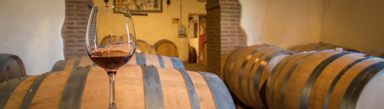 wine tours in Italy, barrels in cellar in Montalcino