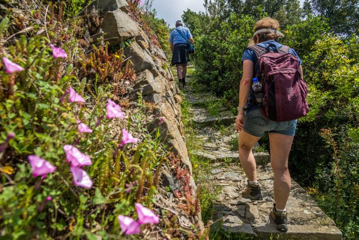 hiking and trekking itineraries in italy