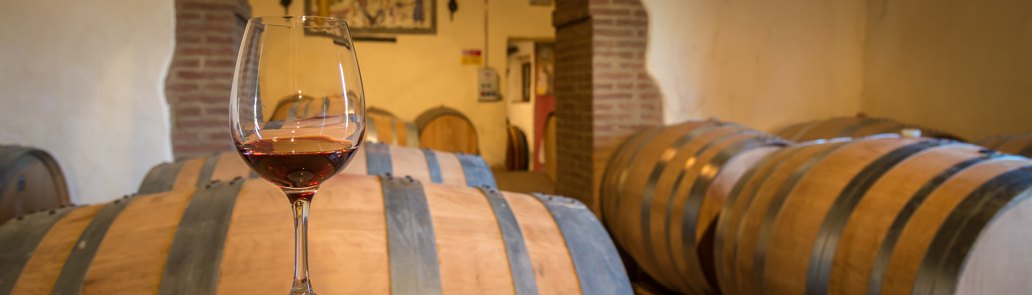 wine tours in Italy, barrels in cellar in Montalcino