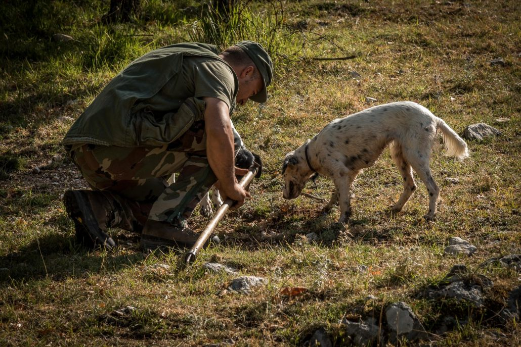 truffle hunt in Umbria, Italy