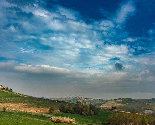 Landscape in Alba, Langhe, piedmont, Italy