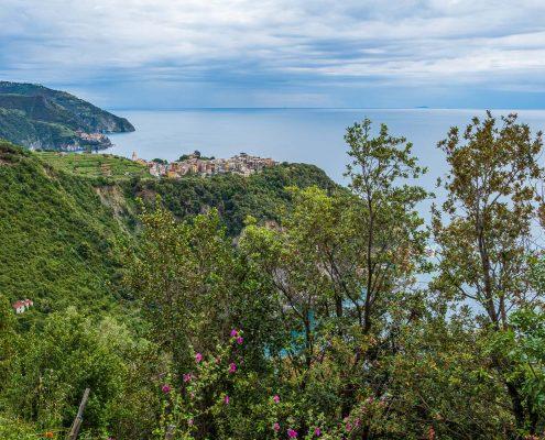 Trail to Corniglia, Cinque Terre National park