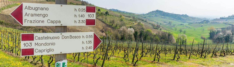 beautiful landscapes in Monferrato- Piedmont- Italy