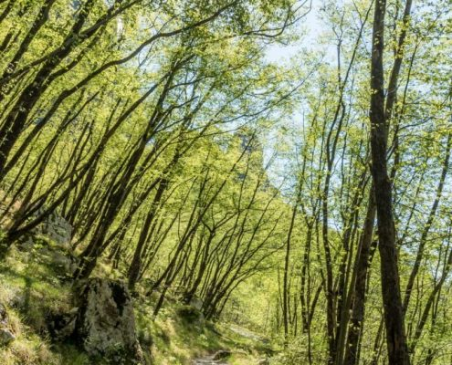 Hiking in Lunigiana- Italy