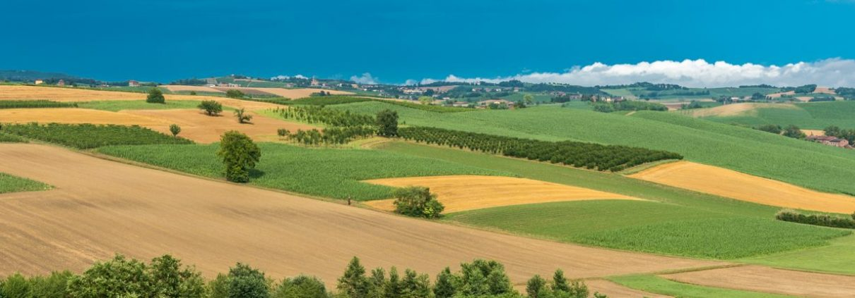 beautiful landscapes in Monferrato- Piedmont- Italy