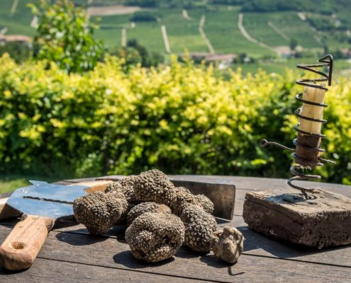 Truffle search in Piedmont- Monferrato- Italy