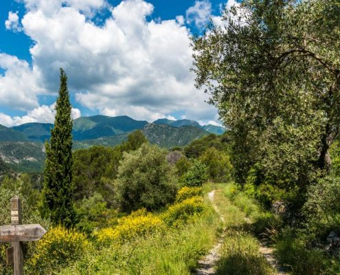 Hikings with spectacular views- West Liguria & French Alps- Italy
